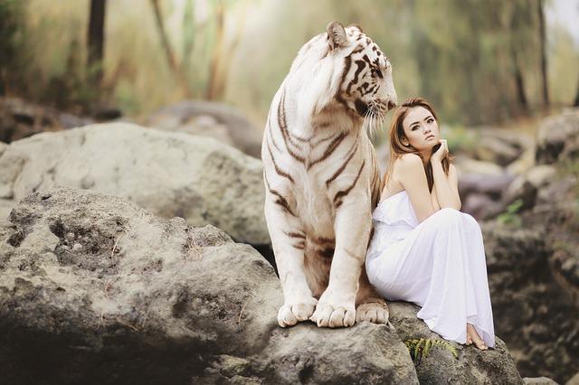 Žena sedí pri tigrovi.jpg